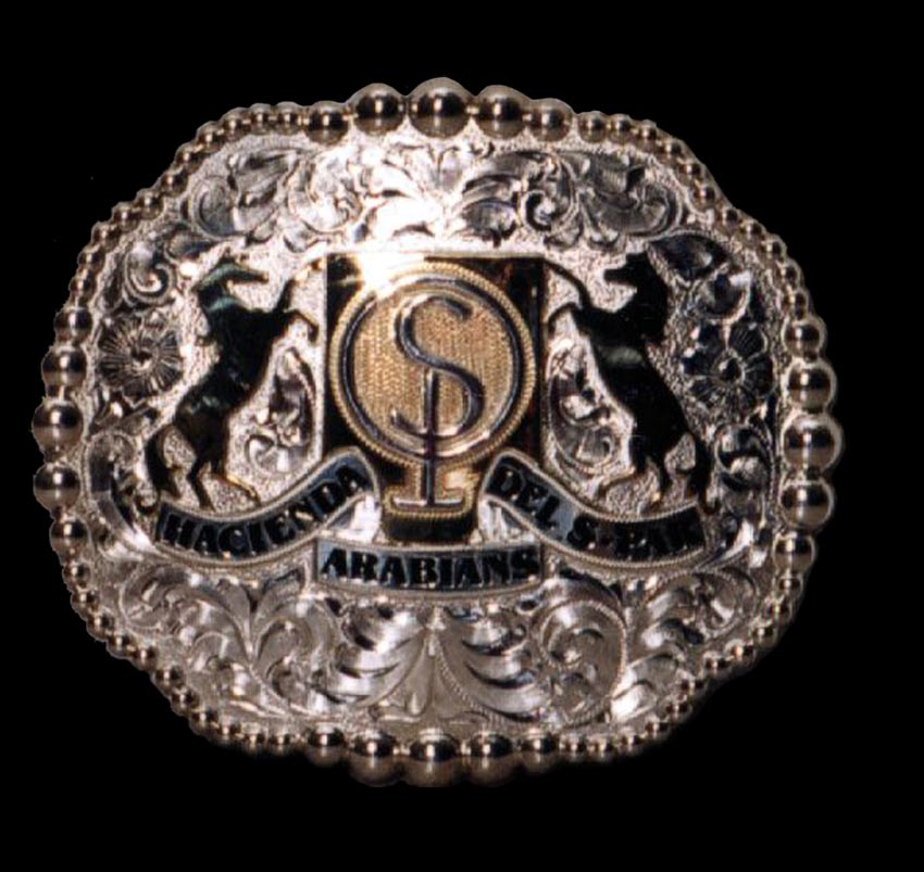 Buckle – Hacienda Arabians